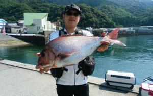 昼釣りの釣果です。北九州の松永さん。いつもグレをよく釣りますが、今日は大きい鯛ですねえ。1.5号のハリスで取り込みました。さすが!